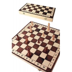 1T. Big chess game «Numbers and letters»